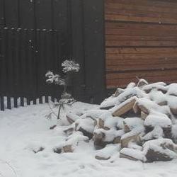 ogrodzenia-galeria-3